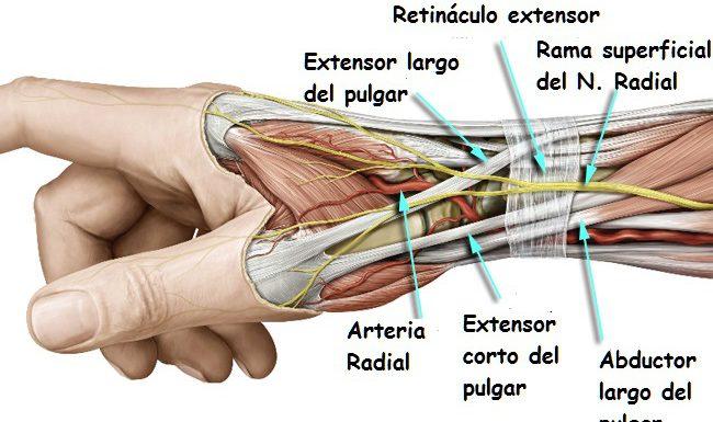 tendinitis en el dedo pulgar sintomas